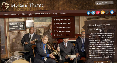 Classic 2 Band Website Skin